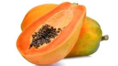 Photo of Incredible Health Benefits of Papaya That You Did Not Know Before