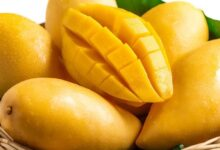 Photo of 10 Incredible Health Benefits of Mango